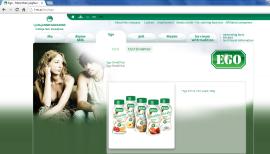 Awarded corporate and brands website of Ljubljanske mlekarne - brand homepage ego