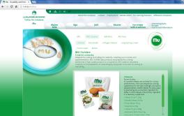 Awarded corporate and brands website of Ljubljanske mlekarne - brand homepage mu landing page