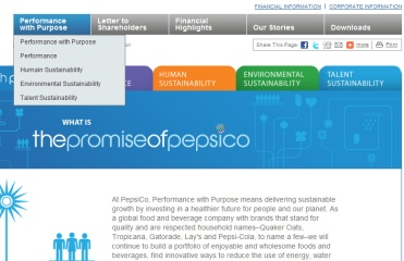 A small case study of New York based corporations on reporting systems - Pepsico