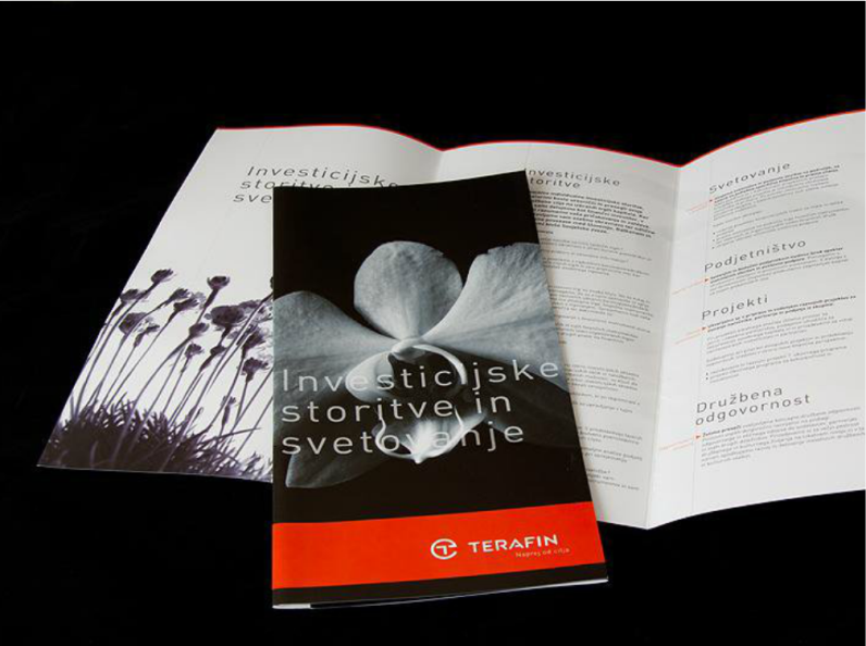 Promo materials for the financial services agency Terafin